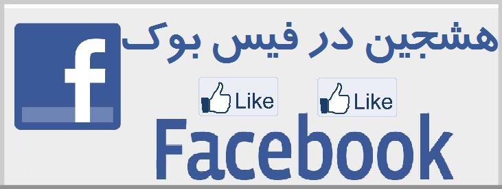 هشجین در فیس بوک